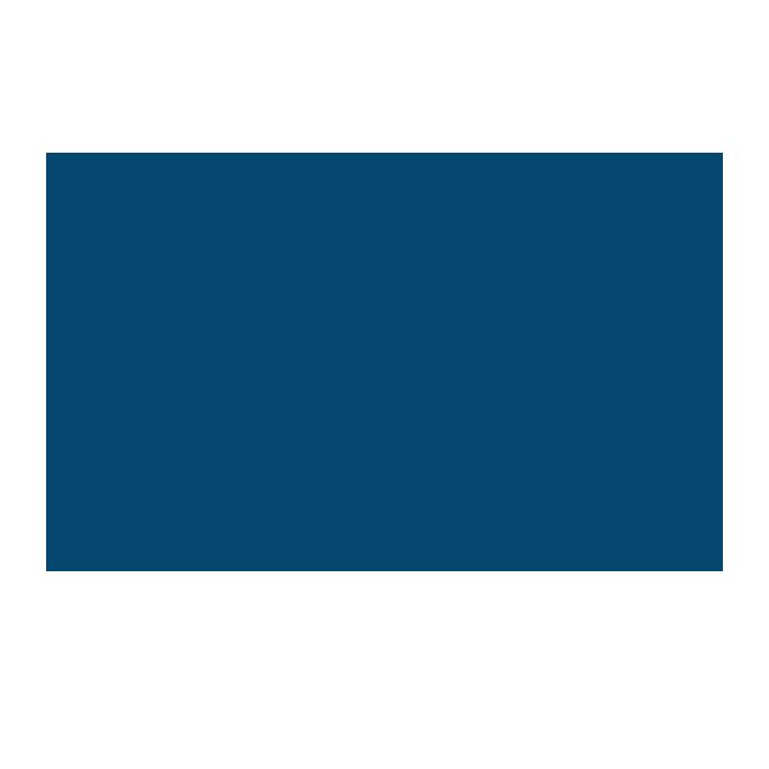 Dedicatio Fysioterapi logo